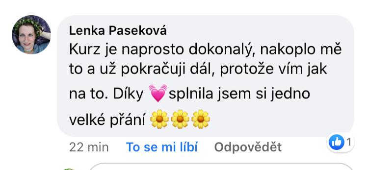 reference Daniela Wiszova